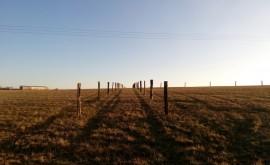 Výstavba ohrad pro koně a hospodářská zvířata